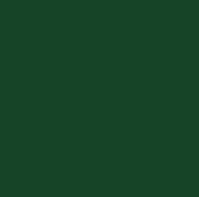 6. Armazenamento das castanhas