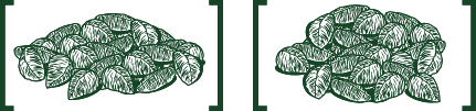 9. Formação de lotes de castanha
